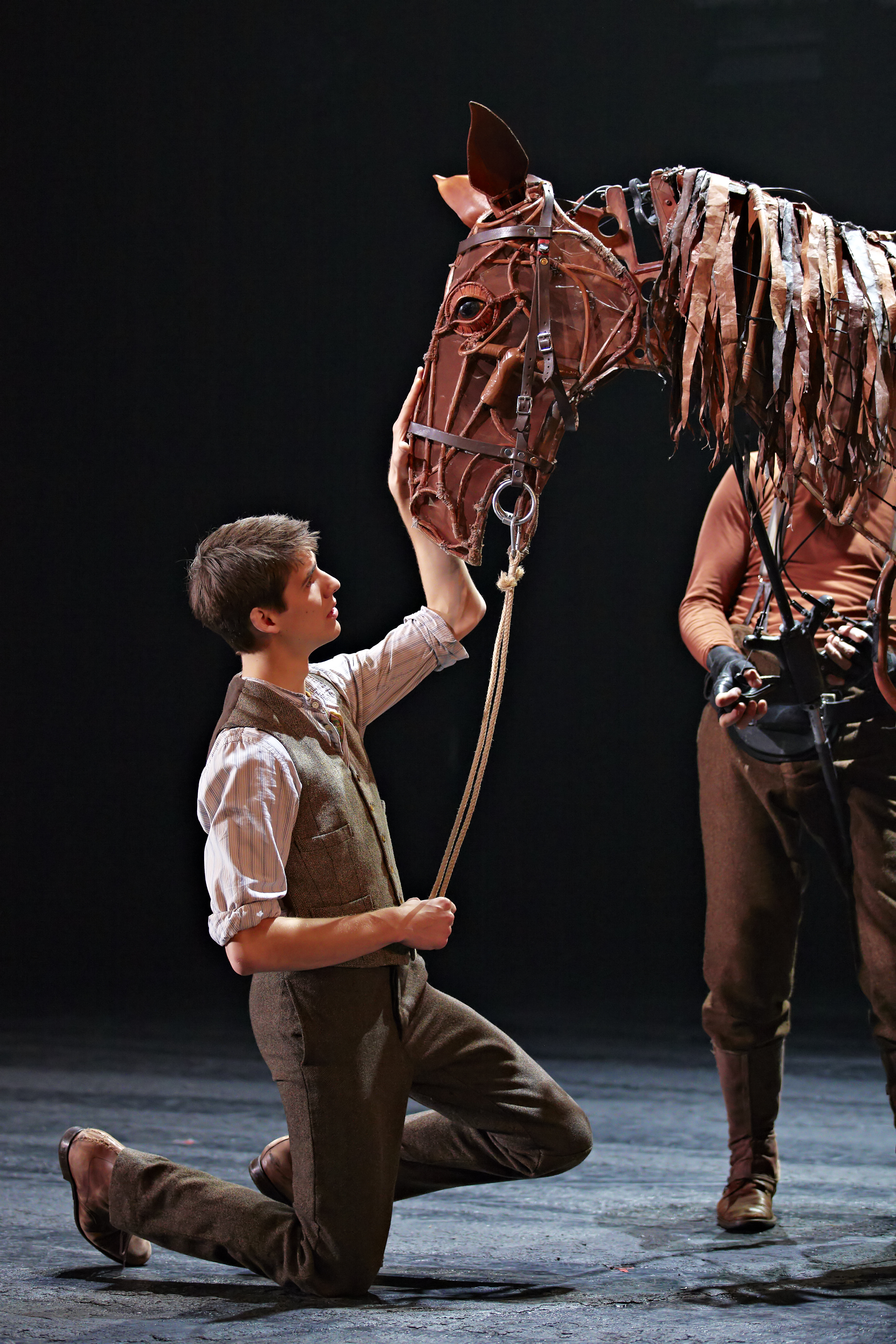 War Horse NZ